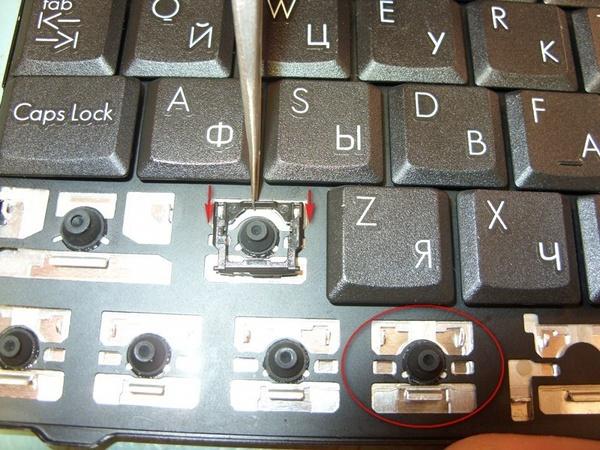 Ремонт клавиатуры ноутбуков своими руками фото